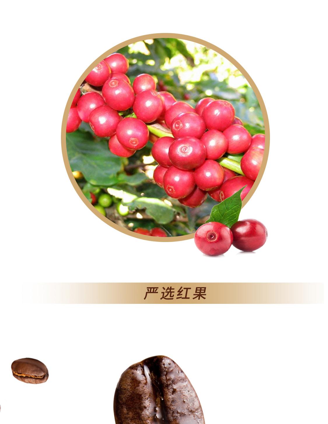 摩卡速溶咖啡_08.jpg