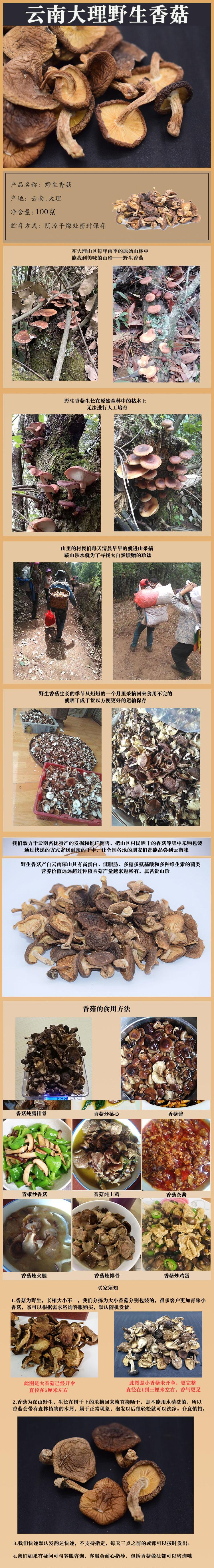 香菇菌100g.jpg