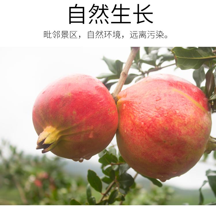 软籽石榴详情页 (17).jpg